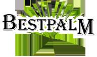 BestPalm| Palmy mrozoodporne – sprzedaż, porady Logo